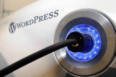 Plug-In Word Press.